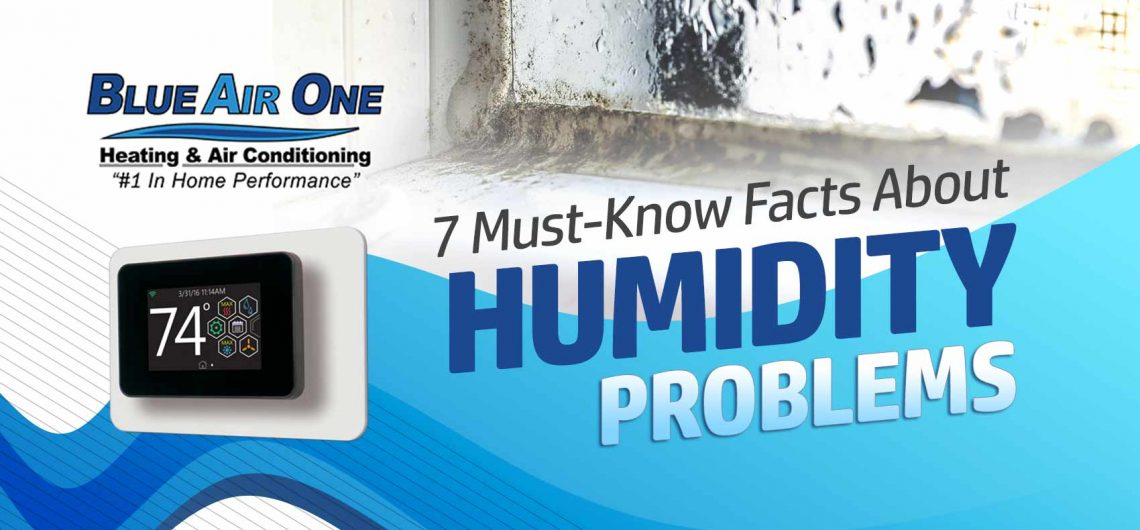 7 Must-Know Facts About Humidity Problems